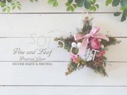 画像1: シルバーデージーとブルニアの星形スワッグ〜Vine and Leaf の Christmas〜