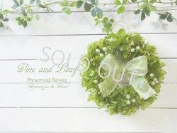 画像1: プリザーブドアジサイのグリーンリース〜長く飾れるプリザーブドフラワーリース
